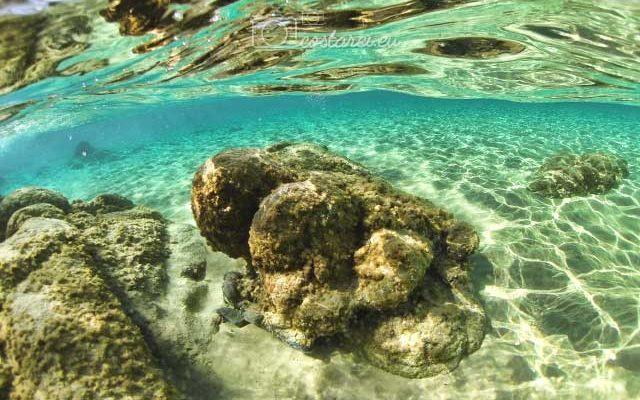 costa-rei-scoglio-sotto-mare.jpg